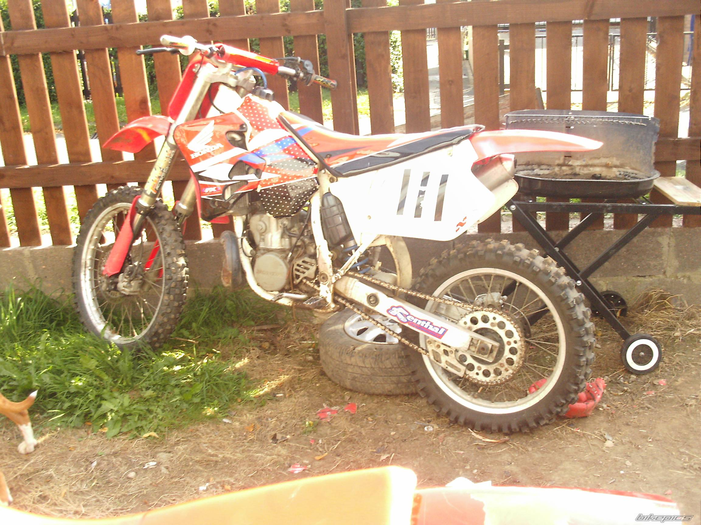 1996 HONDA CR 250 | Picture 413048 motorcycle photo