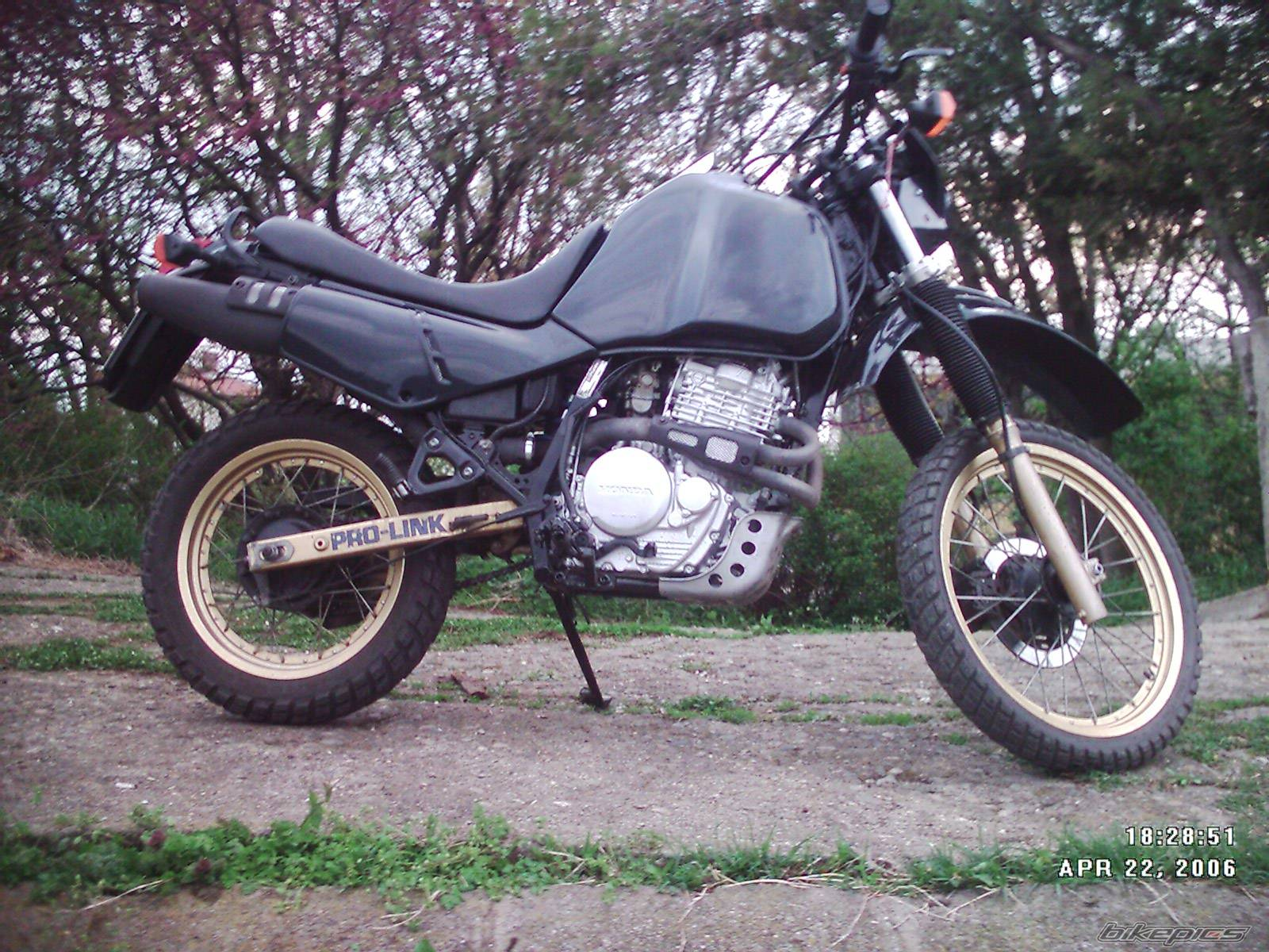 1986 HONDA XL 600 | Picture 571094 motorcycle photo