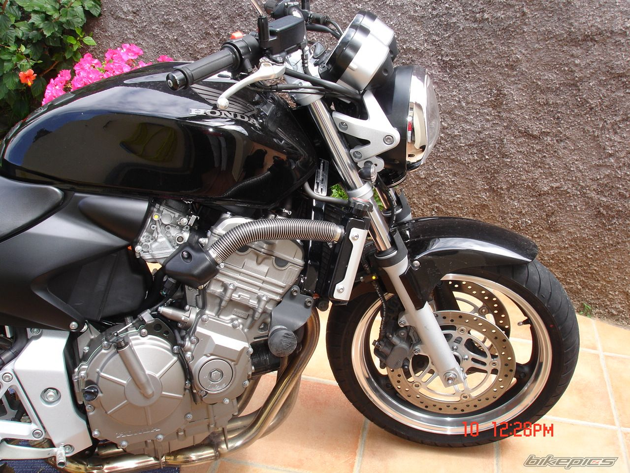 2004 HONDA CB 600 HORNET | Picture 607413 motorcycle photo