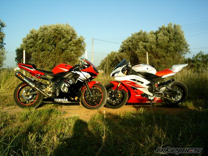 2003 YAMAHA YZF R6 | Picture 644111 motorcycle photo