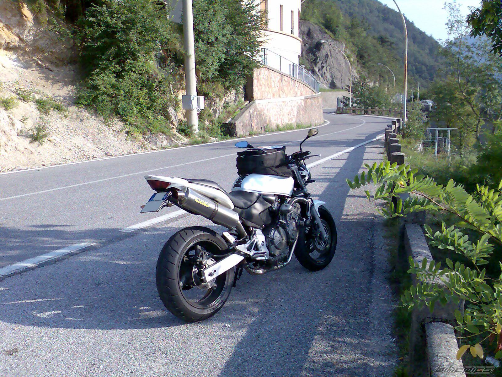 2004 HONDA CB 600 HORNET | Picture 668287 motorcycle photo