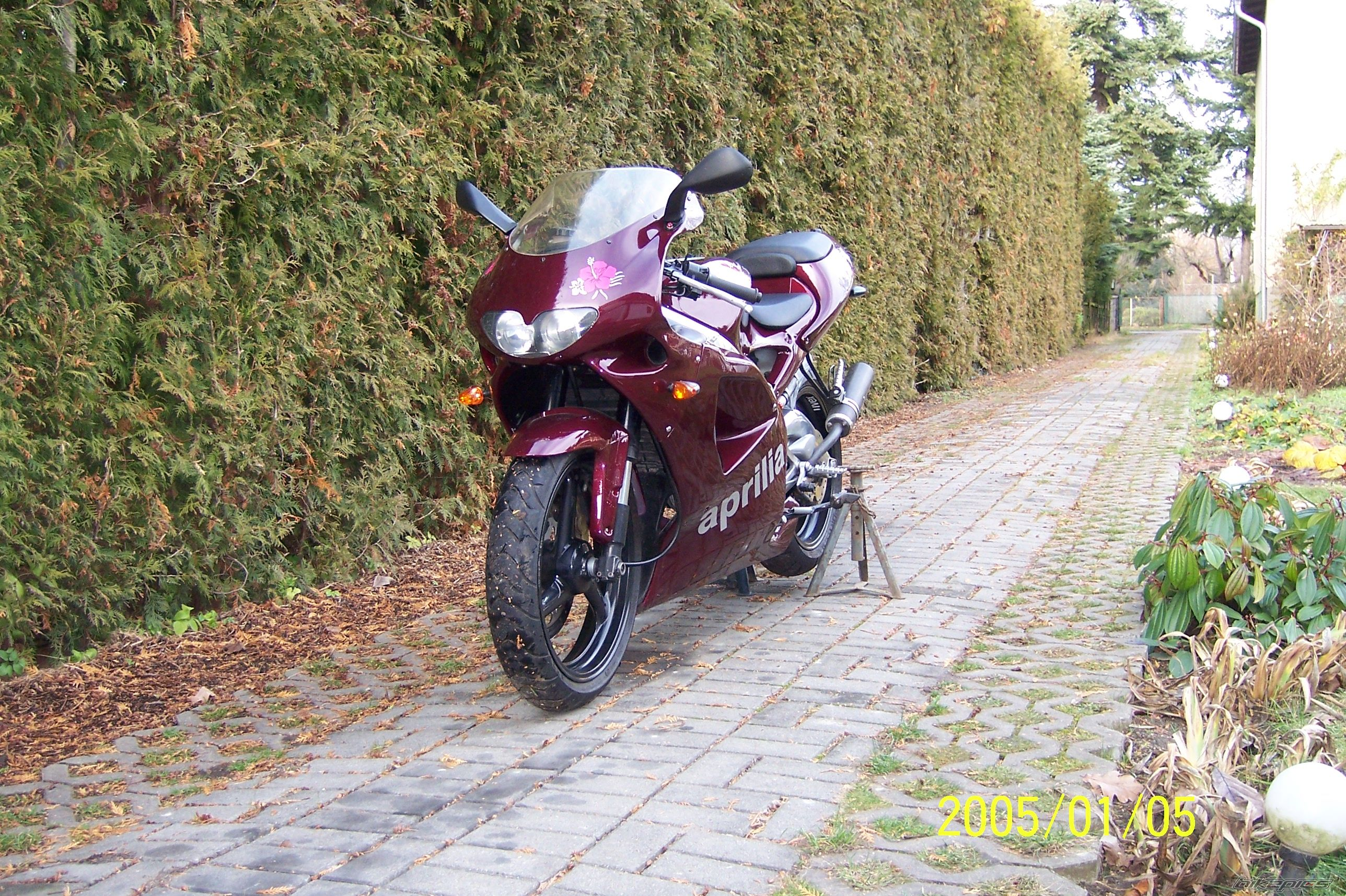 1999 APRILIA RS 125 | Picture 1098804 motorcycle photo