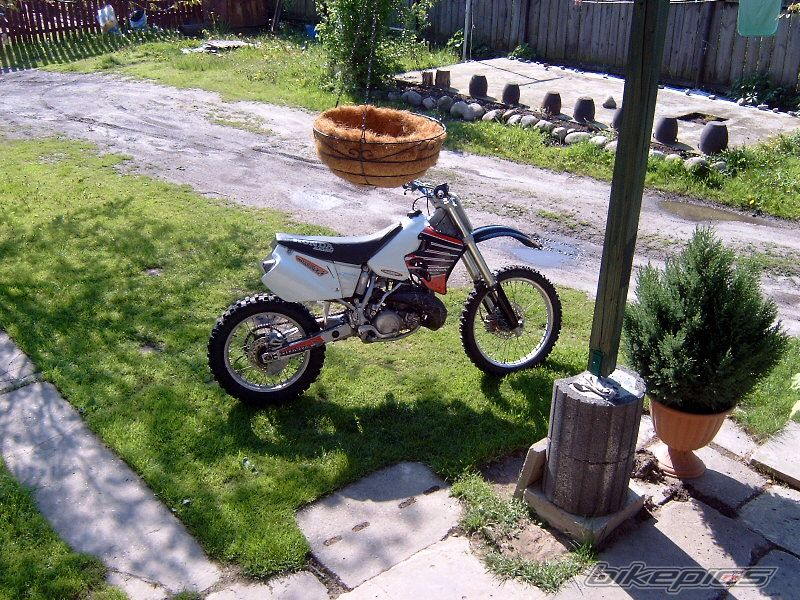 1996 HONDA CR 250 | Picture 1291375 motorcycle photo