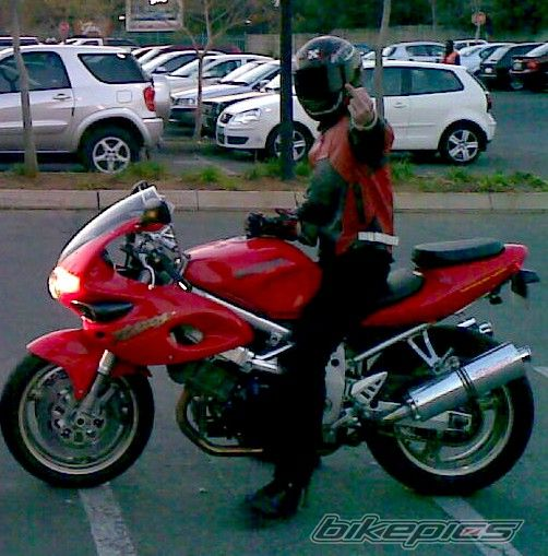 2008 SUZUKI TL1000S | Picture 1387011 motorcycle photo