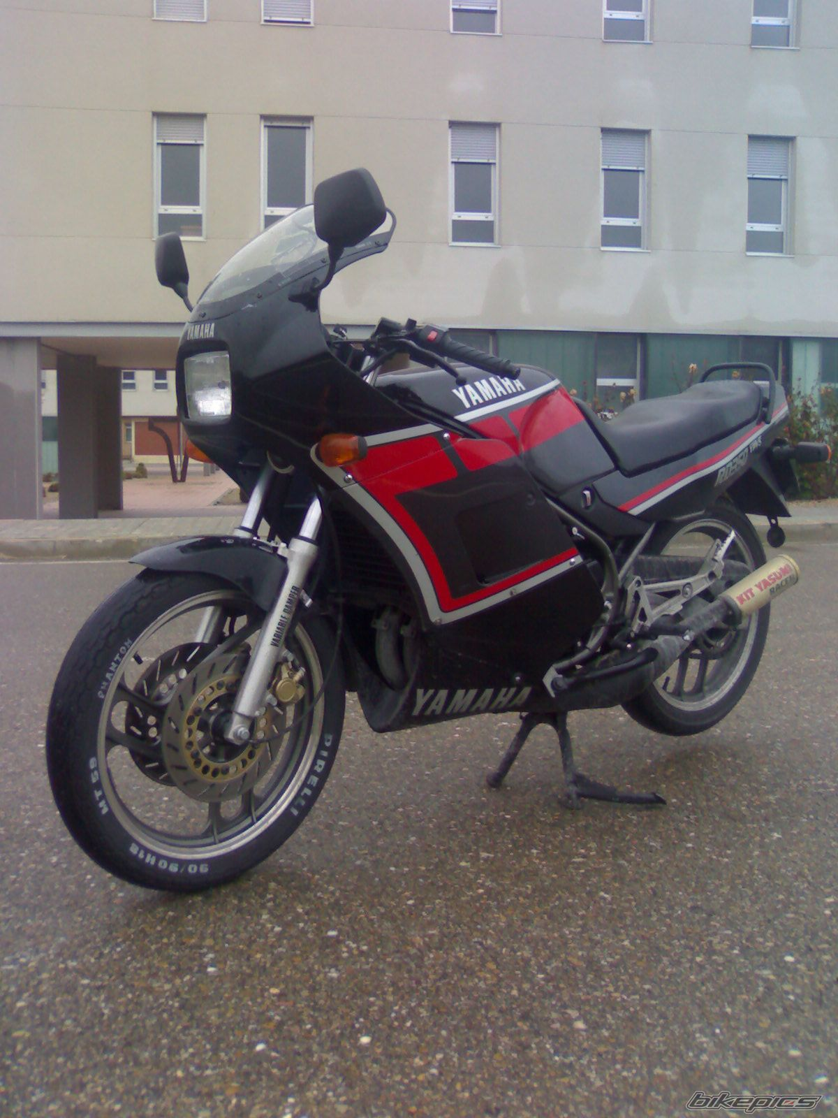 1988 YAMAHA RD 350 | Picture 1504216 motorcycle photo
