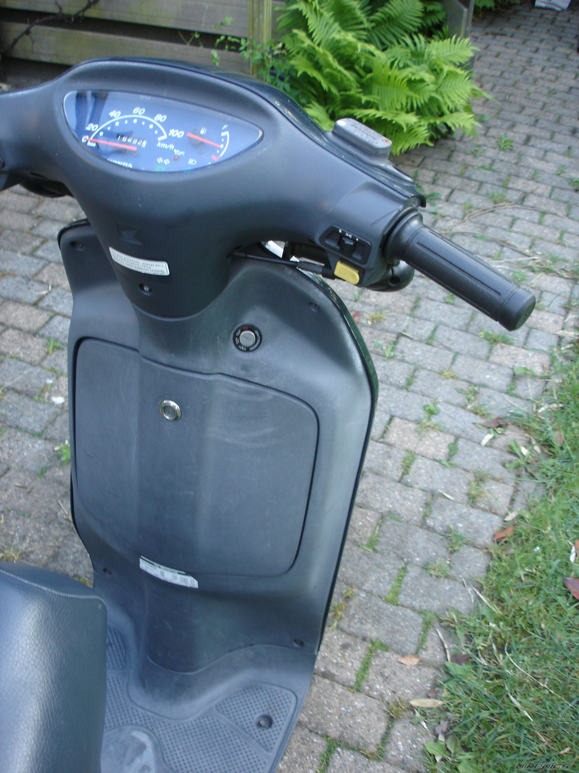 2001 HONDA SH 50 SCOOPY | Picture 1690594 motorcycle photo