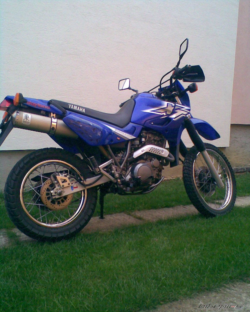 2001 YAMAHA XT 600 | Picture 1846759 motorcycle photo
