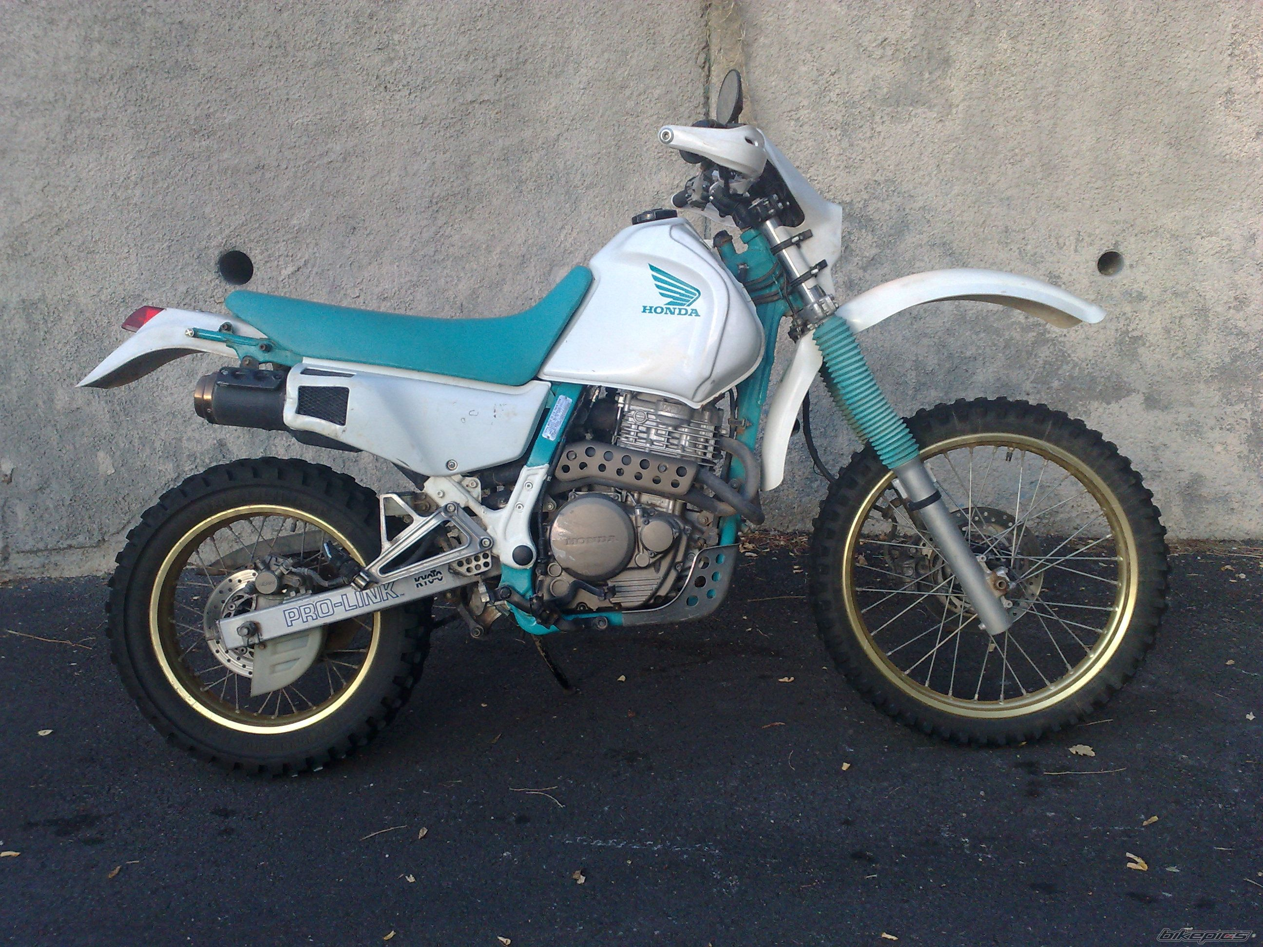 1990 HONDA NX 650 DOMINATOR | Picture 2814871