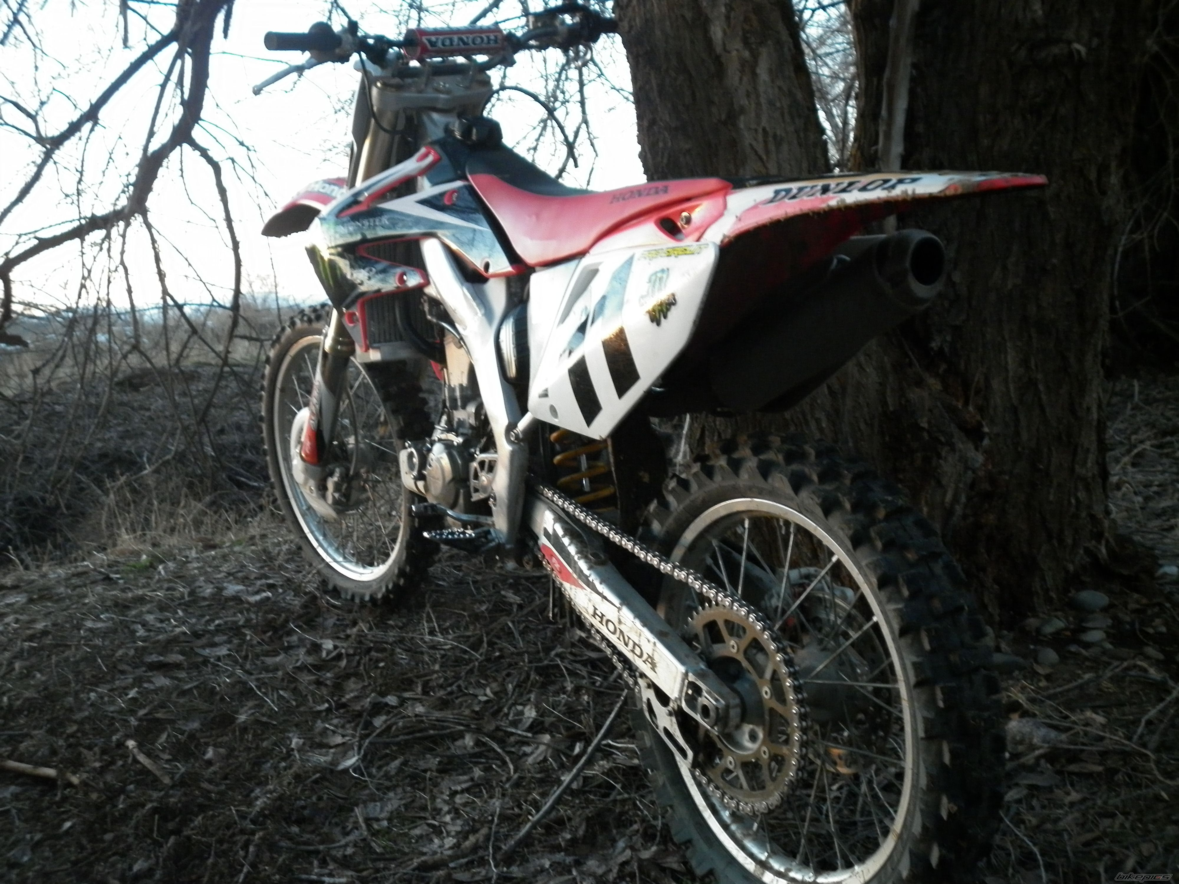 2005 HONDA CRF 250 | Picture 2131426 motorcycle photo