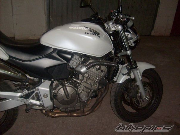 2004 HONDA CB 600 HORNET | Picture 2231192 motorcycle photo