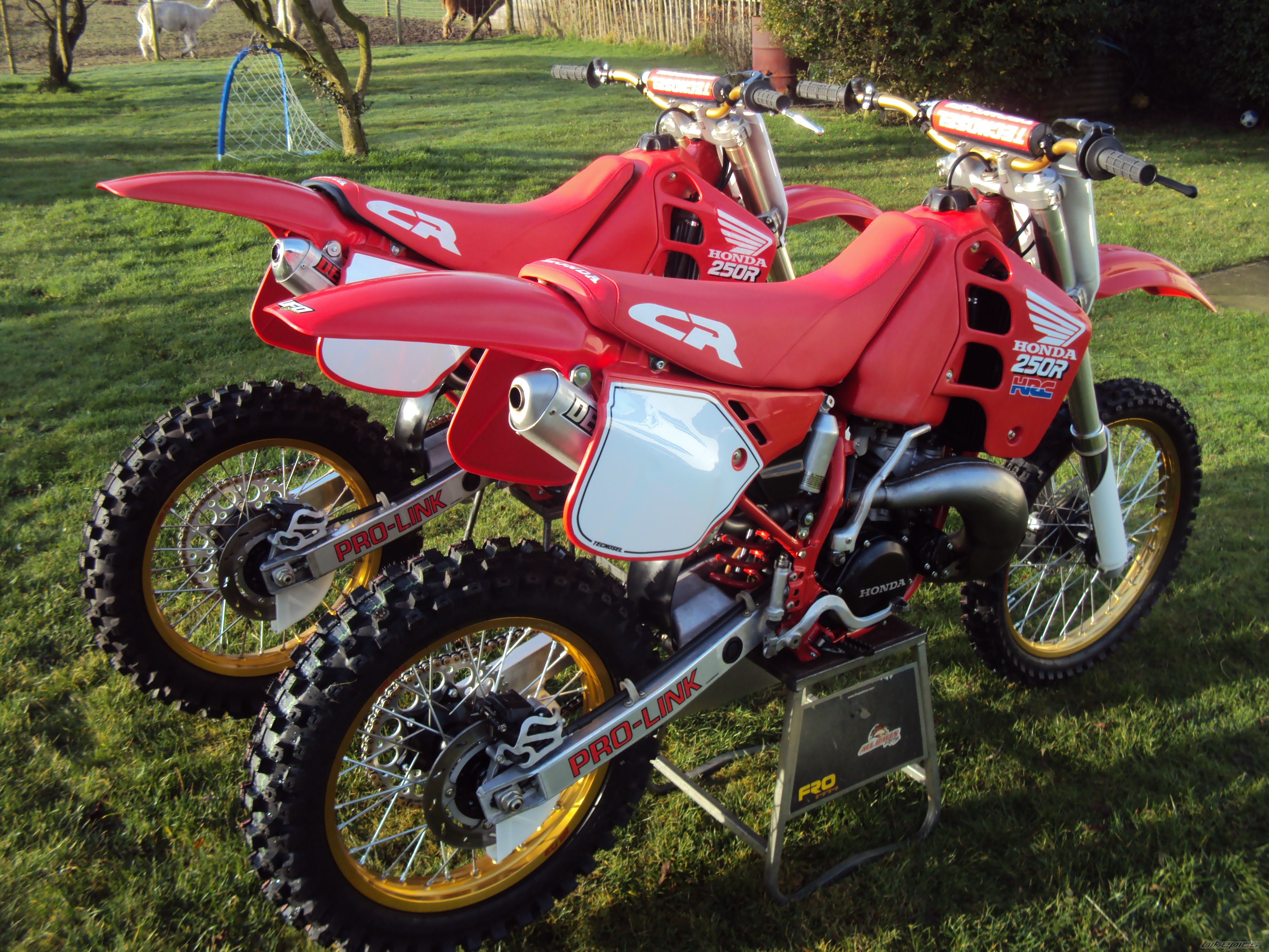 1989 HONDA CR 250 | Picture 2509153 motorcycle photo