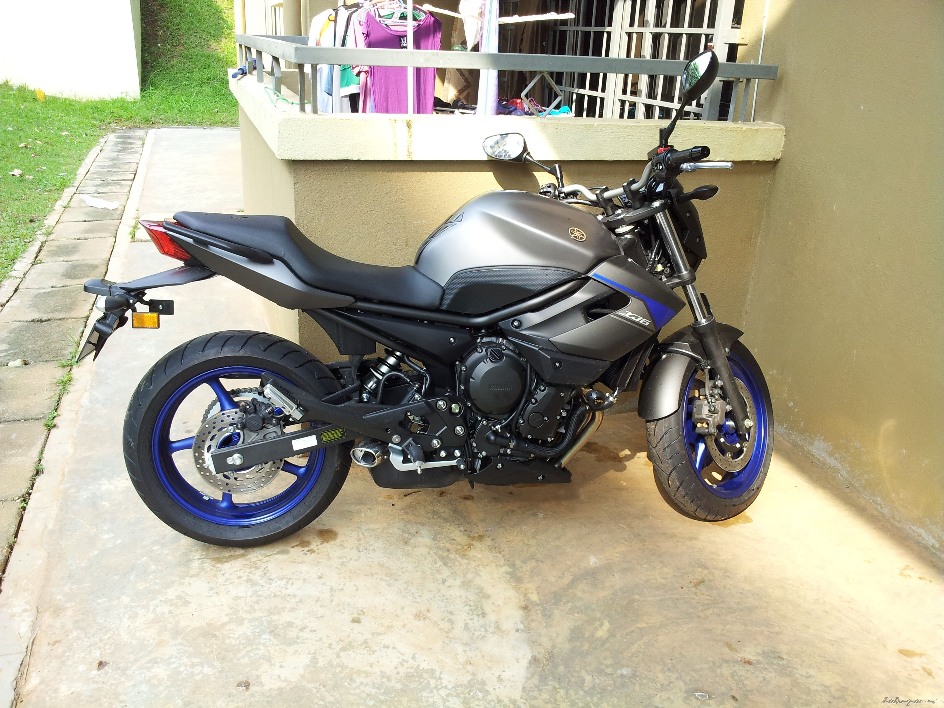 2013 YAMAHA XJ6N | Picture 2552012 motorcycle photo