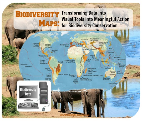 biodiversity map of the world, global biodiversity
