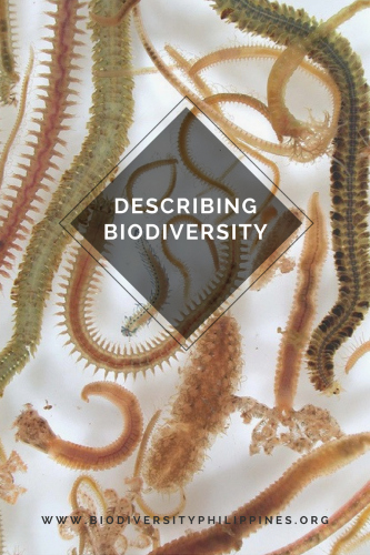 why is biodiversity important, examples of biodiversity