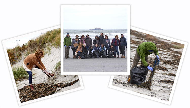 Bionica and Coastsweep volunteers cleaning up trash on the beach.