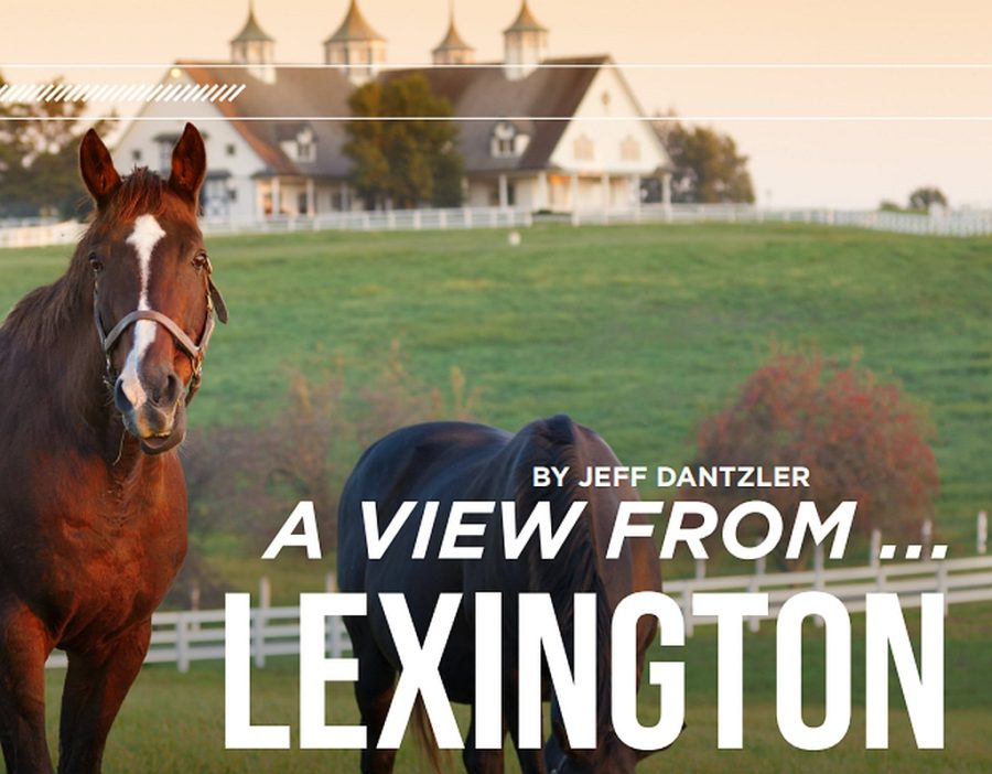 A-view-from-Lexington-KY