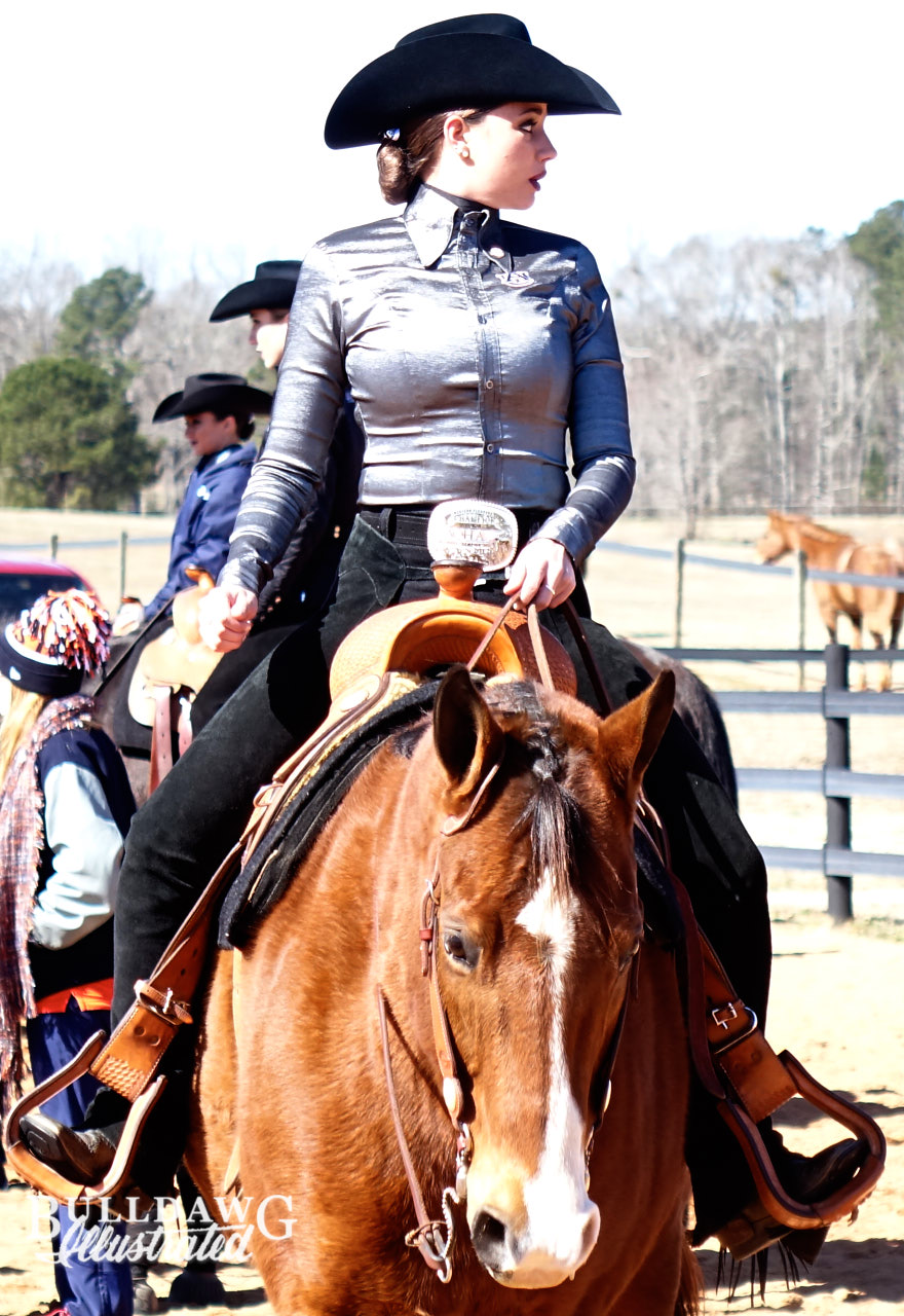 Uga Equestrian Archives Bulldawg Illustrated