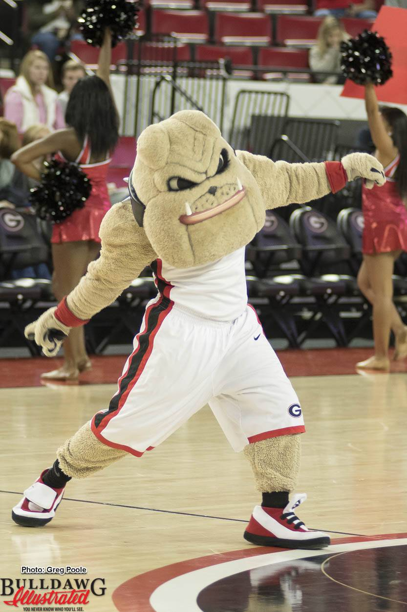 Hairy Dawg fires up the crowd duing a Georgia men's basketball game against Charleston Southern 17-Dec-2016