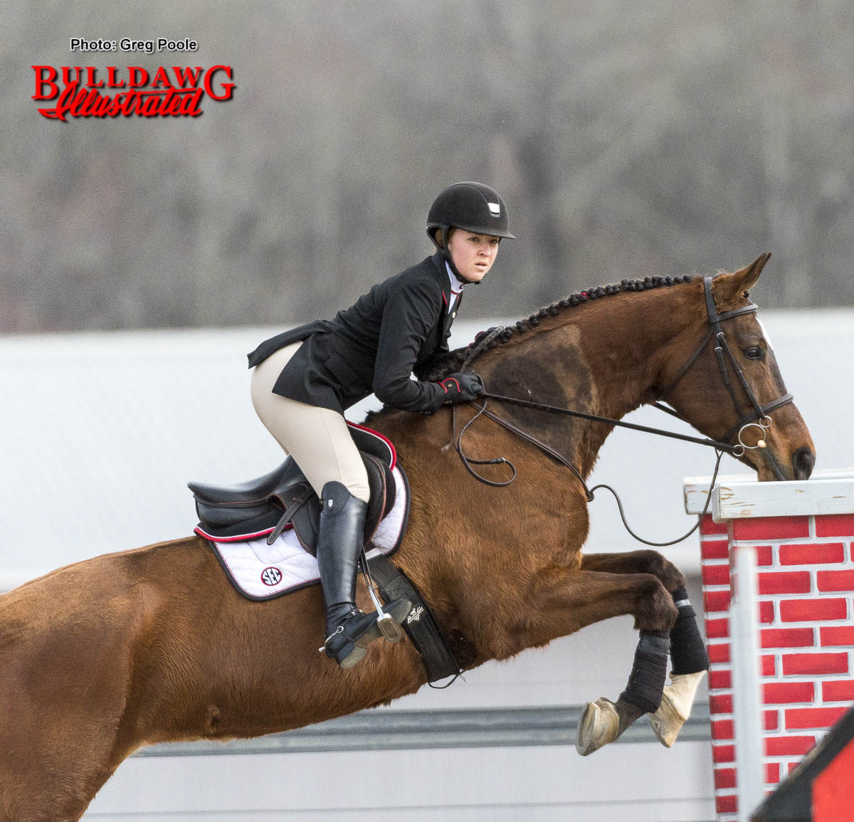 Georgia's SEC Championship equestrian team will be the no. 2 seed in the 2017 National Championship