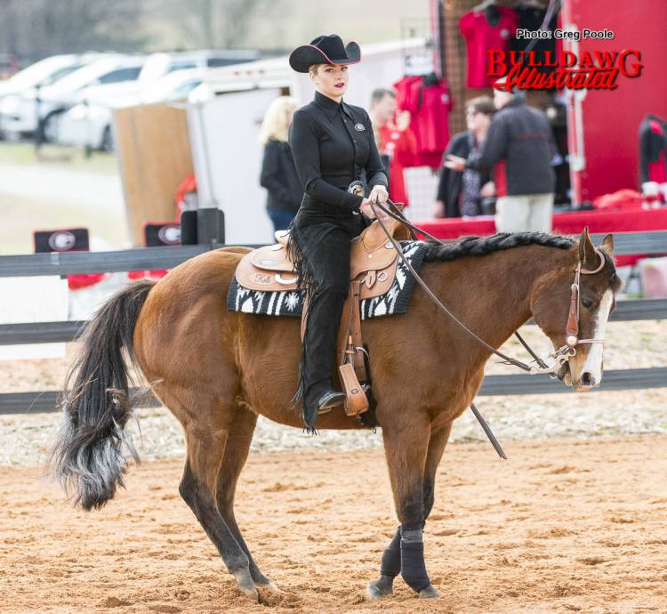 Georgia equestrian team rider and horse during meet versus South Carolina