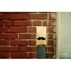 Moustache 20pole 20brick product list