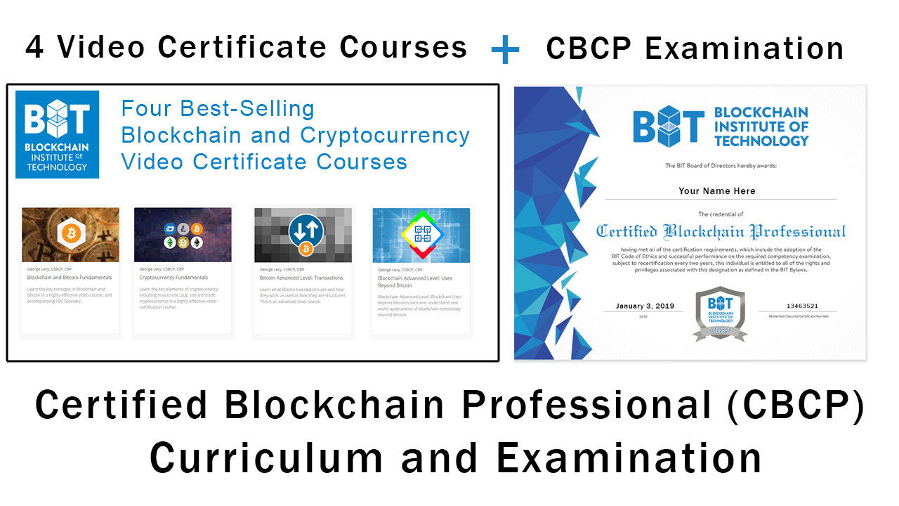 Certified Blockchain Professional Curriculum and Examination