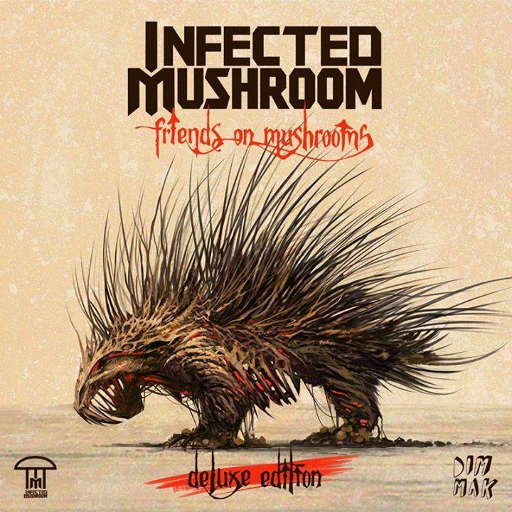 Infected Mushroom @ Mulberry Mountain  - Ozark, AR