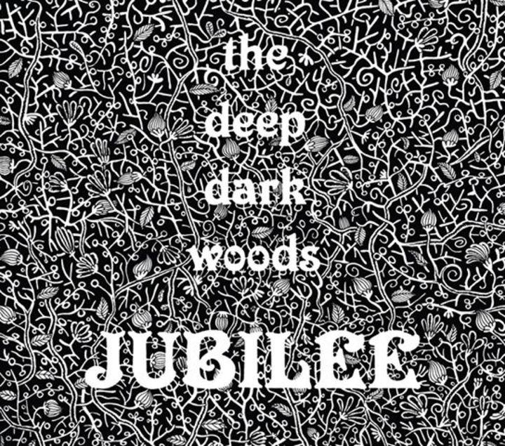 The Deep Dark Woods @ Hi-Dive - Denver, CO