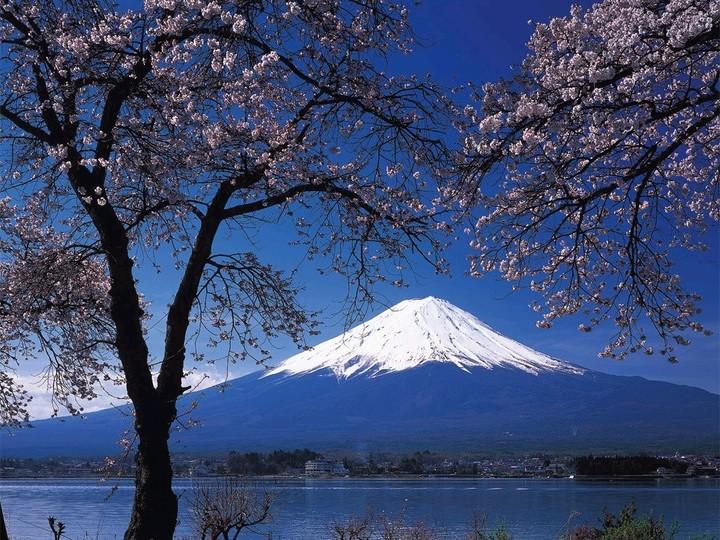 Fuji Tour Dates