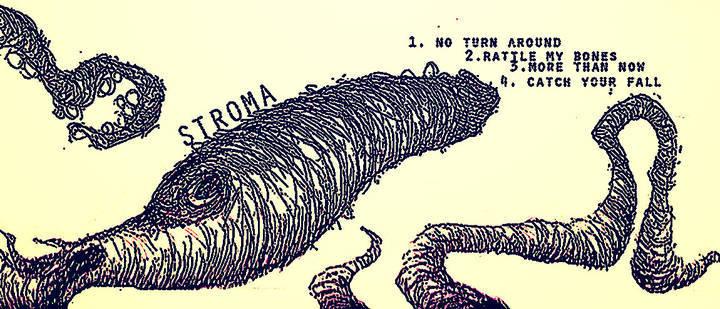 Stroma Tour Dates