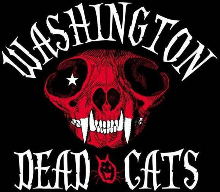 Washington Dead Cats @ La Puce a l'Oreille - Riom, France