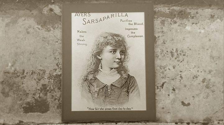 Sarsaparilla Music Tour Dates