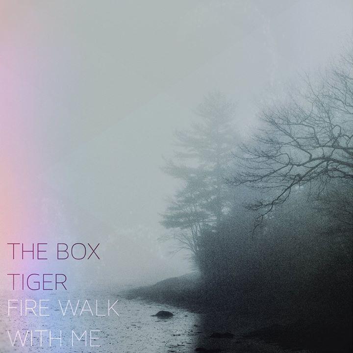The Box Tiger @ The Rock Shop - Brooklyn, NY