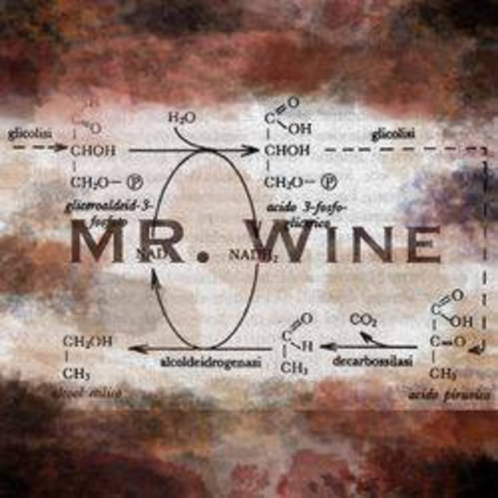Mr.Wine Tour Dates