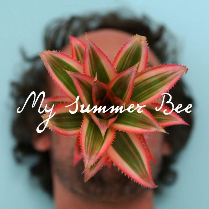 My Summer Bee Tour Dates