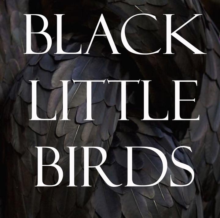 Black Little Birds Tour Dates