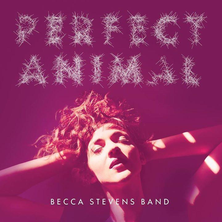 Becca Stevens Band @ Jazzclub Tonne e.V. - Dresden, Germany