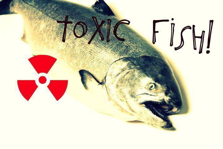 Toxic Fish Tour Dates
