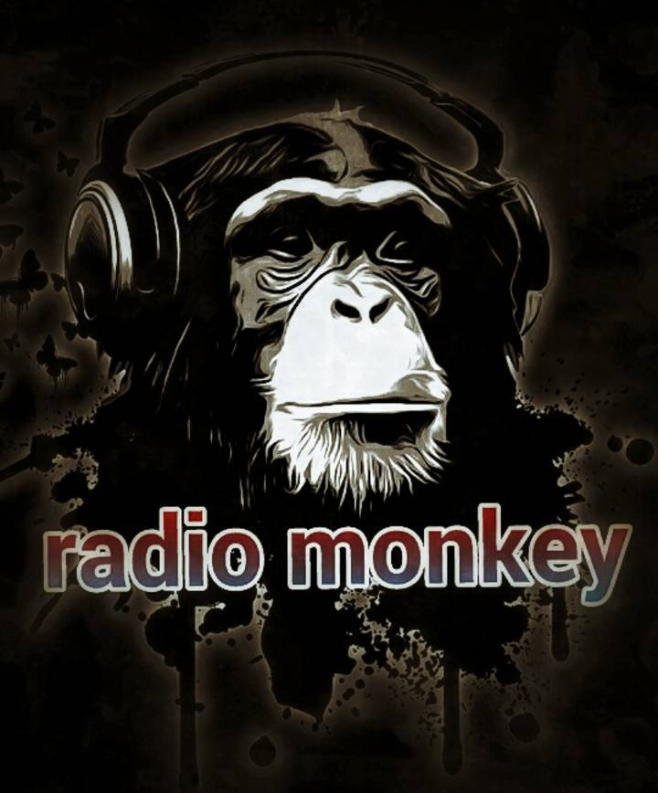 Radio Monkey @ Fish Head Cantina - Halethorpe, MD