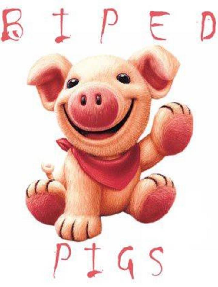 BIPED PIGS Tour Dates