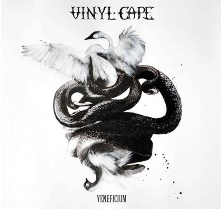Vinyl Cape Tour Dates