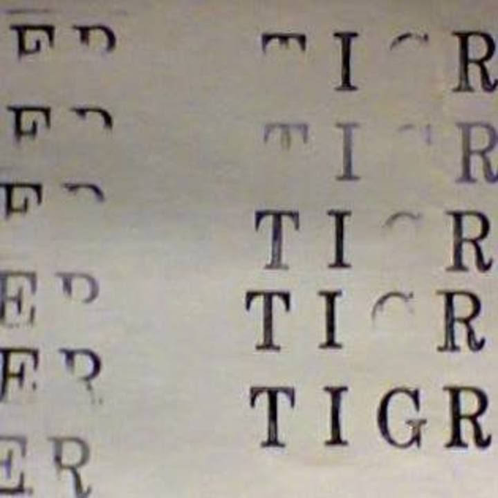 Papier Tigre @ Rock School Barbey - Bordeaux, France