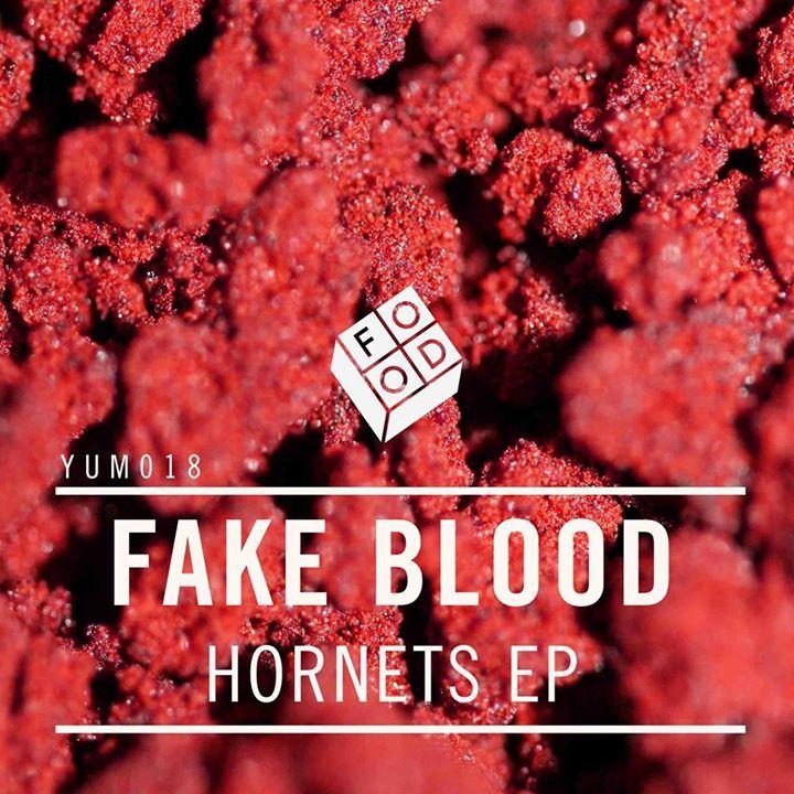 Fake Blood @ Punchestown Racecourse - Naas, Ireland