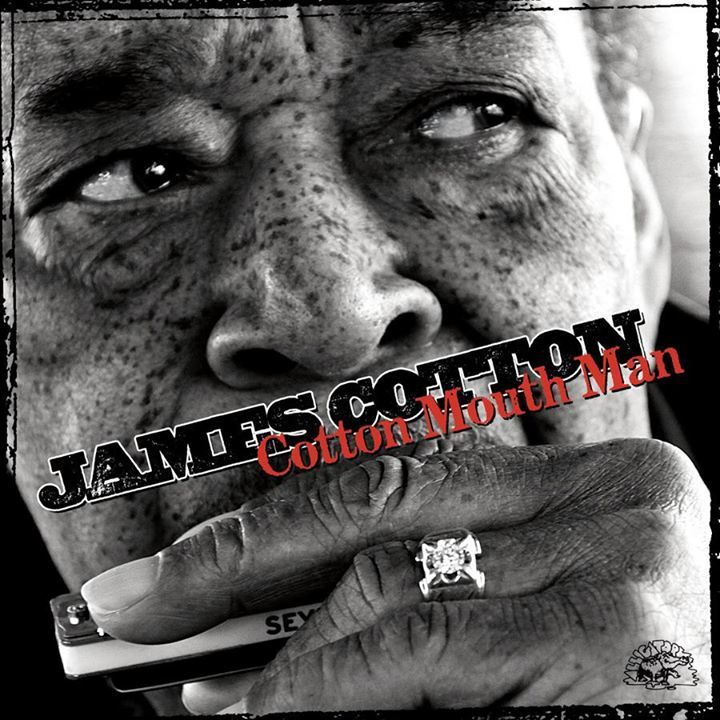 James Cotton Fan Page @ Blues at the Crossroads II: Benaroya Hall - Seattle, WA