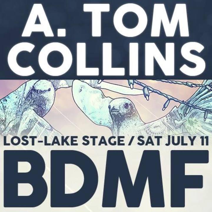 A. tom collins @ Hi-Dive - Denver, CO