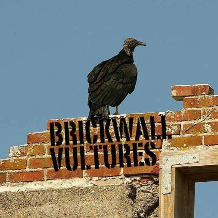 Brickwall Vultures @ Reggies - Chicago, IL