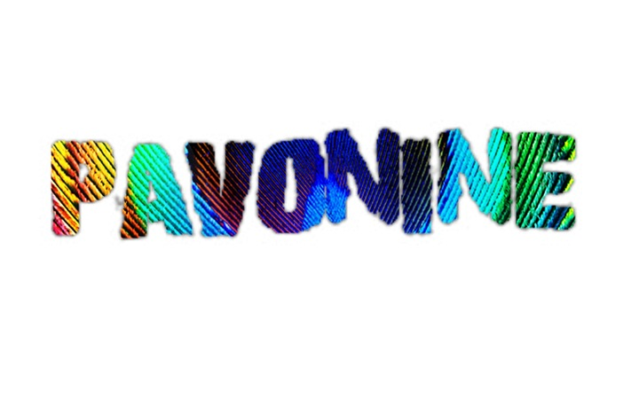 Pavonine Tour Dates
