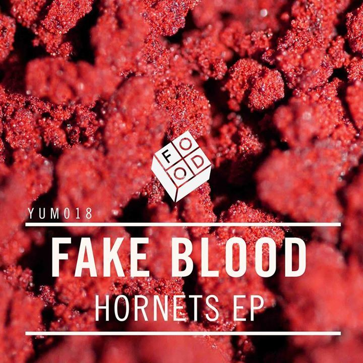 Fake Blood @ Punchestown Racecourse - Naas, Ireland