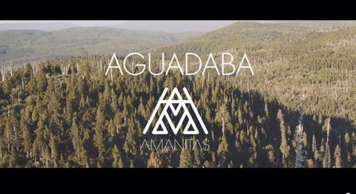 Amanitas Banda Tour Dates
