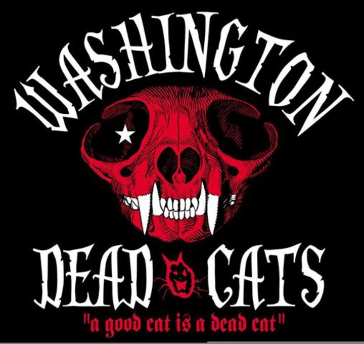 Washington Dead Cats @ MJC du Verdunois - Belleville / Meuse, France